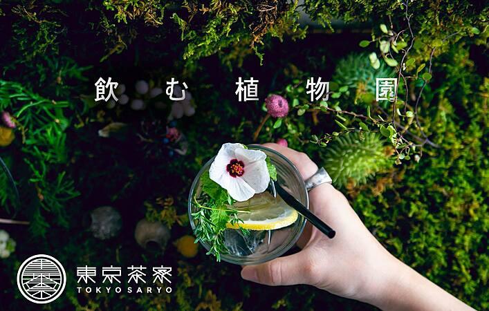 【8/1~8/4】体験型アートイベント「飲む植物園@東京茶寮」が4日間限定開催
