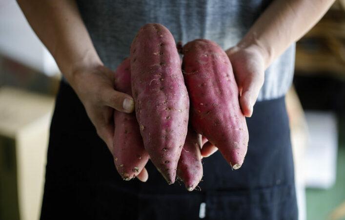 ニッポンのおいしい、いただきます! ~加賀野菜の魅力に迫る Vol.4~