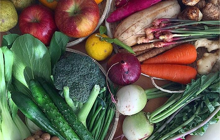 【常備菜】45分で3品!秋野菜で簡単&美味しい定番レシピ公開